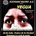 Yegua ¿Qué pasa en México?