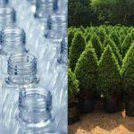 Intercambia plástico por un árbol
