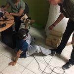 Estudiantes de Prepa Tec integran realidad virtual en zooterapias de autismo
