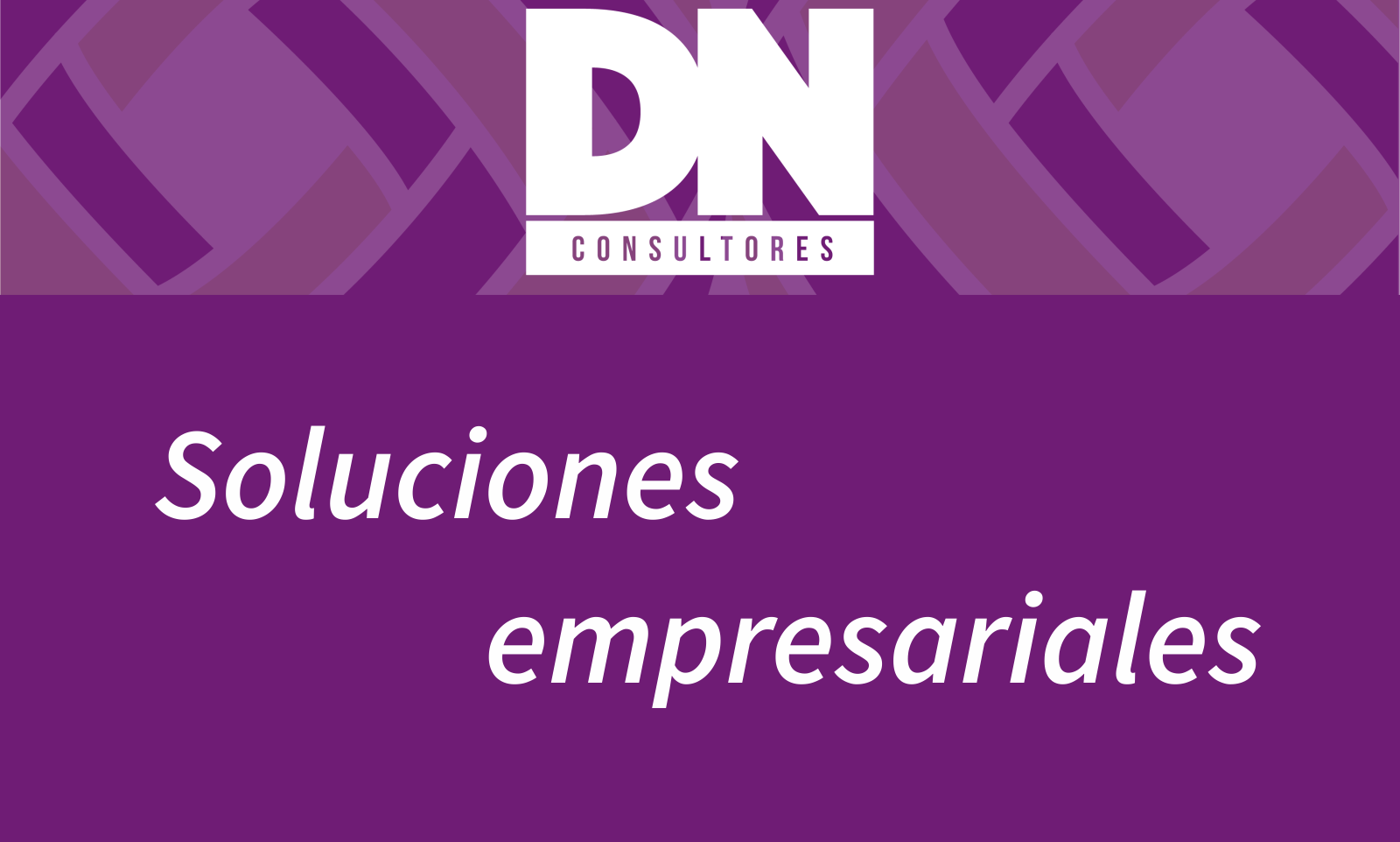 DN consultores