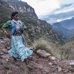 Este año se esperan 38% más participantes en Ultramaratón de los Cañones