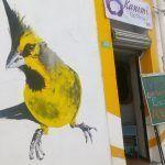 Kanimi ecotienda reúne desde popotes reciclables hasta artesanía rarámuri