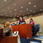 Red Mira expone la situación de la mujeres con el actual Gobierno ante la asamblea de la ONU